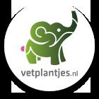 Logo vetplantjes.nl